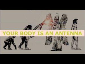Gerald Clark, Anunnaki Made Humans As Biological Robots - You are an Antenna, Check Your Posture