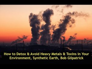 How to Detox & Avoid Heavy Metals & Toxins in Your Environment, Synthetic Earth, Bob Gilpatrick