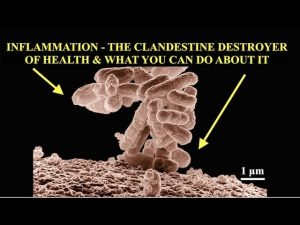 Inflammation, Clandestine Destroyer of Health & What You Can Do About It, Live Q & A Bob Gilpatrick