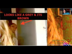 The Smoking Gun, Physical Evidence of Extra Terrestrials, Implants & Alien Abduction
