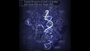 Editing Out the God Gene to Patent Your DNA, Bob Gilpatrick