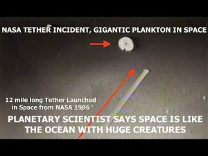 Planetary Scientist, Space is Like an Ocean with Huge Creatures Spanning Miles Across, Disclosure